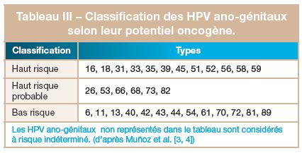 papillomavirus humains potentiellement oncogenes